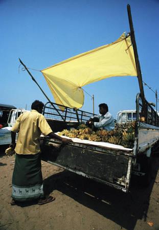 Наталья Беркутова, Шри-Ланка