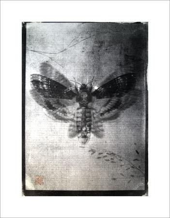Алексей Пиштарь. Масляная печать, 210х300 мм
