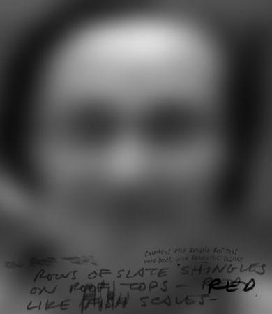 Дерек Бесан, Канада<br>  Незнакомка, 2009, ультрафиолетовая термо-печать на вуальной сетке, 38х33см