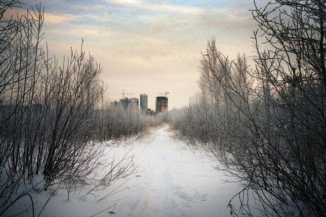 © Михаил Протасевич