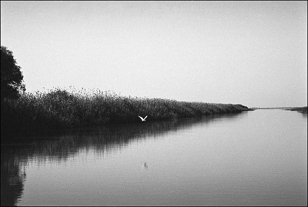©Олег Климов. «Дельта Волги, Астраханская обл. 2000»
