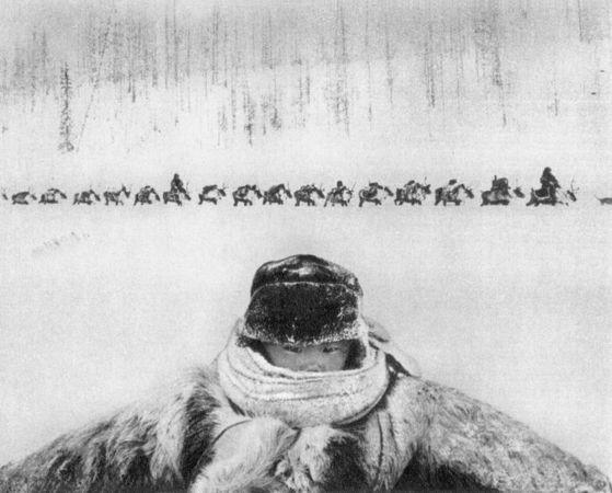 1964, Геннадий Копосов, 1-я премия, категория Features