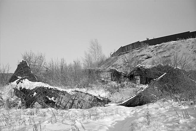 © Валерий Нистратов. Из проекта «Документы природы»