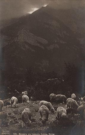 &copy;Василий Сокорнов. «Вечер в горах близ Ялты. 1910-е<br> Бромсеребряный отпечаток с широкого стеклянного негатива»
