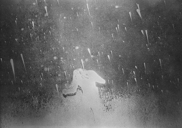 © Daisuke Yokota