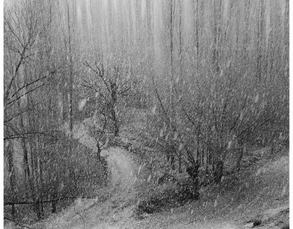 © Cemil Batur Gokceer