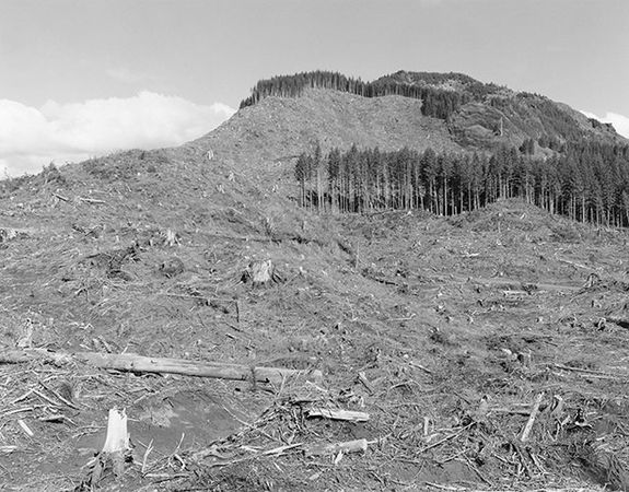 Robert Adams, from the series Turning Back (Clatsop County, Oregon, 1999)