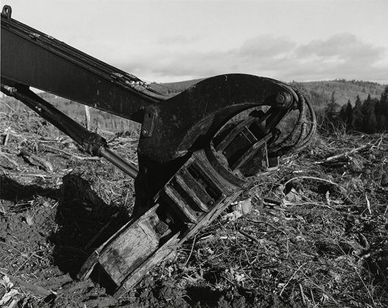 Robert Adams, from the series Turning Back (Near Clatskanie, Columbia County, Oregon, 1999)