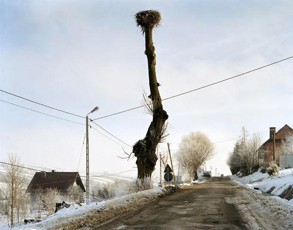 © Mark Power. KRZYZOWKA  2004