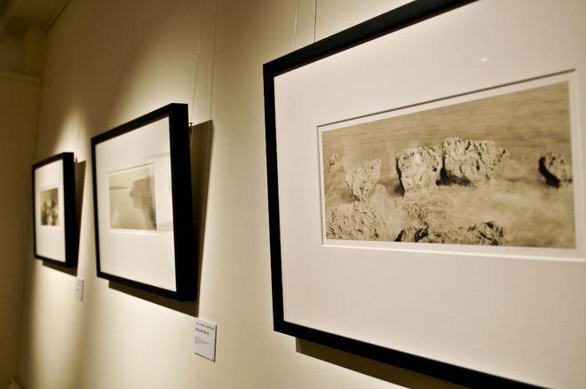 Выставка платино-палладиевых работ