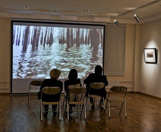 Видеопрезентация на выставке Ю.Левдик-Занаревского