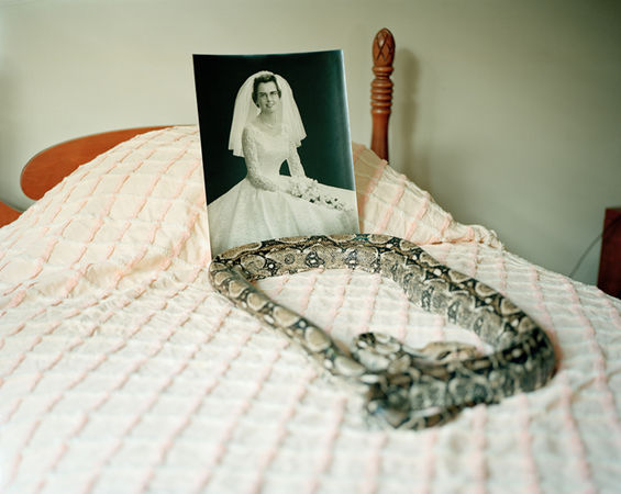 © Susan Worsham. Snakes on my Childhood Bed