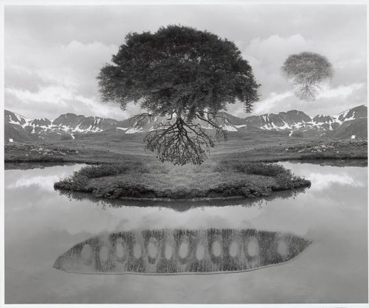 Untitled [Trees Floating Over Mountains and Lake], 1969<br> Jerry N. Uelsmann (American, born 1934)