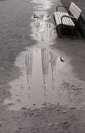 © Narcis Darder