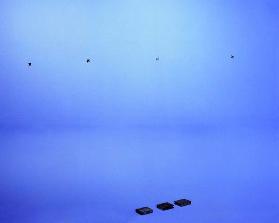 Landscapes, Black Forest, 2012, 126x150 cm,digital c print © Marina Gadonneix