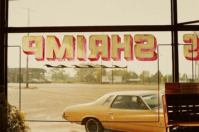 © Eggleston Artistic Trust. William EgglestonAmerican, Louisiana, 1978. Chromogenic print, 8 x 12 in. 99.XM.13.18