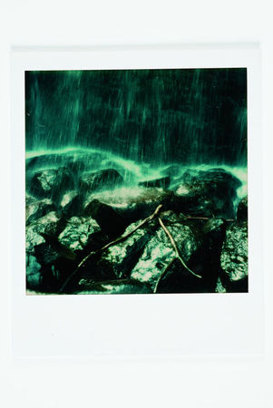 Tree Branch in Waterfall, Polaroid SX-70 print. (Ansel Adams/The Ansel Adams Publishing Rights Trust)