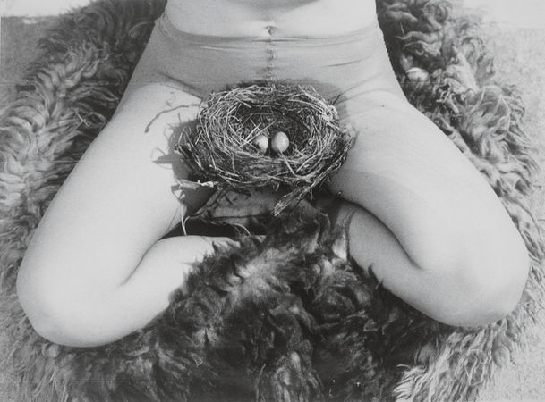 Nest, 1979 Black-and-white photograph © Estate of Birgit Jürgenssen / VBK, Vienna, 2012 / SAMMLUNG VERBUND, Vienna