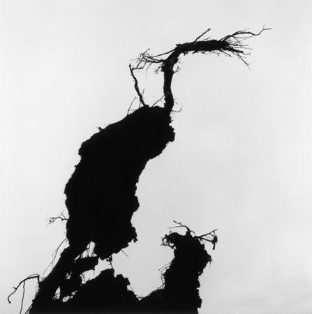 © Gunnar Smoliansky. 1990