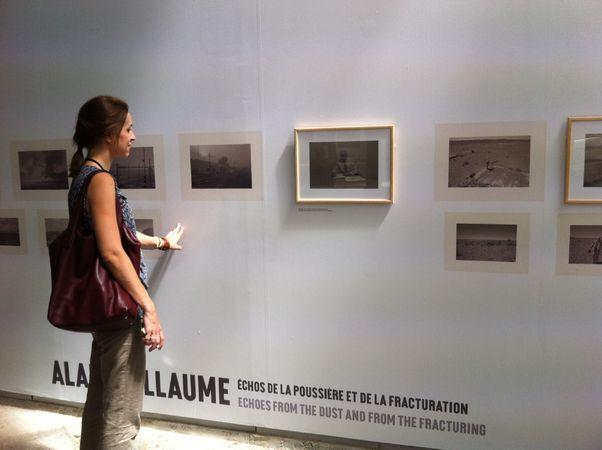 "Alain Willaume,участник проекта""Transition. Social landscape"""