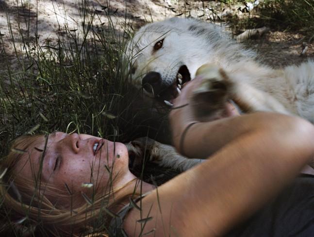 © Holly Lynton. Angel, Wolf, New Mexico, 2008. C-print / FORMAT