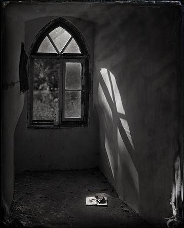 © Алексей Алексеев