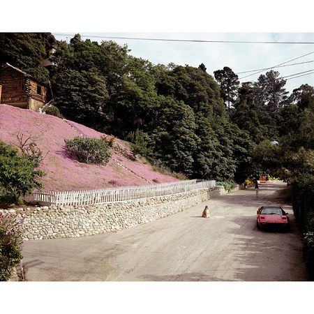 Joel Sternfeld: Rustic Canyon, Santa Monica, California, May 1979 Print: 2006 Digital c-print 121.92 x 148.59 cm Edition of 10 and 2 artist's proofs. Artwork Of Luhring Augustine
