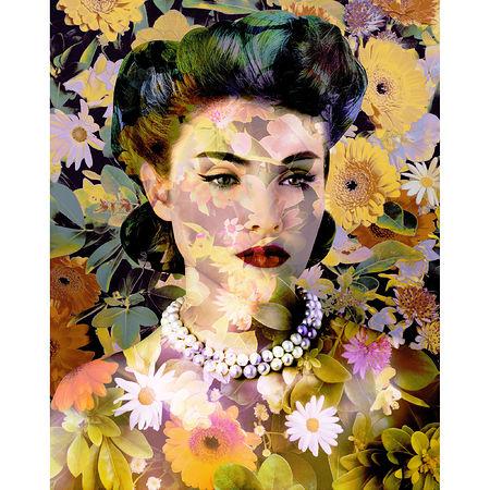 Valérie Belin Arcotis Fastuosa (Namaqua Marigold), 2013 64 1/8 x 51 inches. Artwork Of Edwynn Houk Gallery