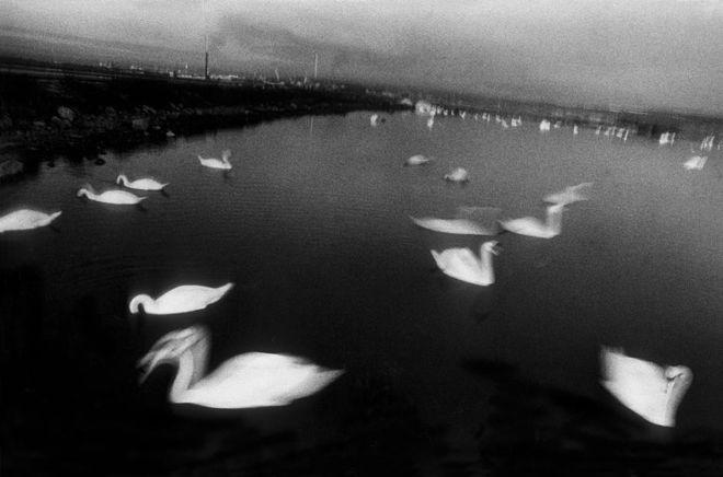 © Antoine D'Agata