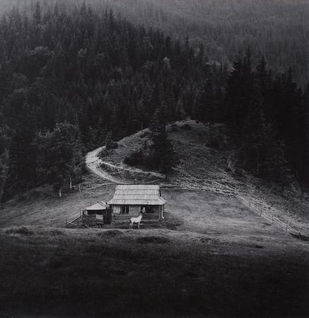 Карпаты. Пейзаж с белой лошадью, 1974