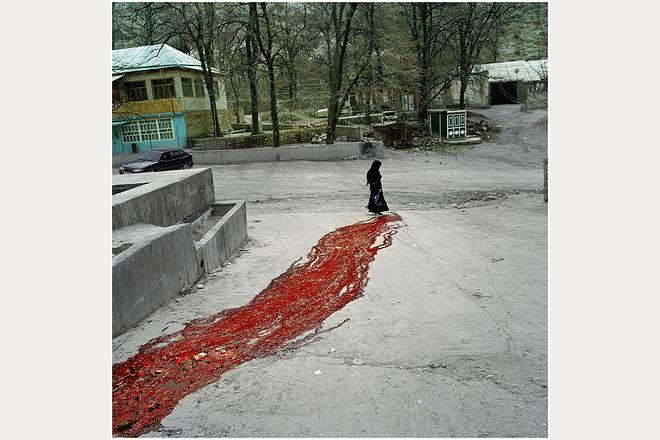 Давид Монтелеоне/Davide Monteleone. Red Tristle. Фотография из проекта