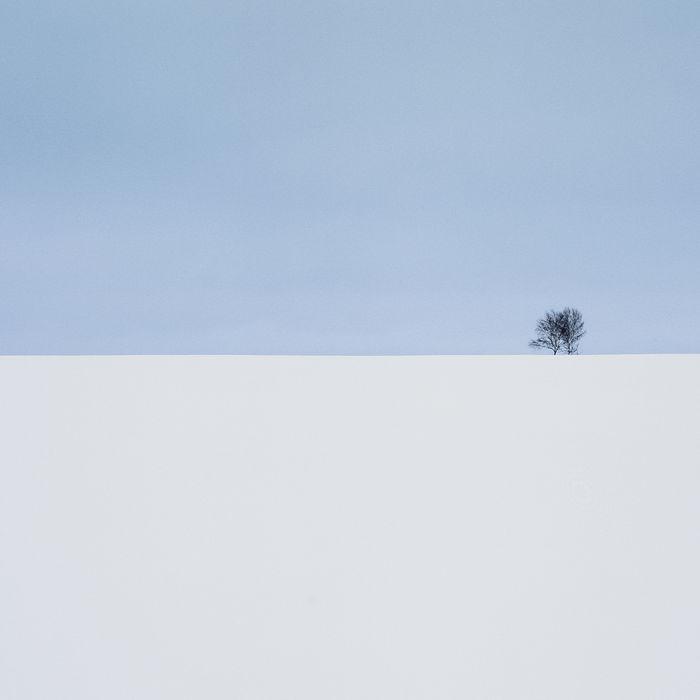 ©Андрей Белков
