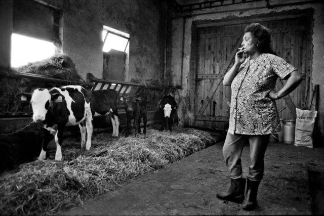 Западная Чехия / Western Bohemia, 1994 © Дана Киндрова