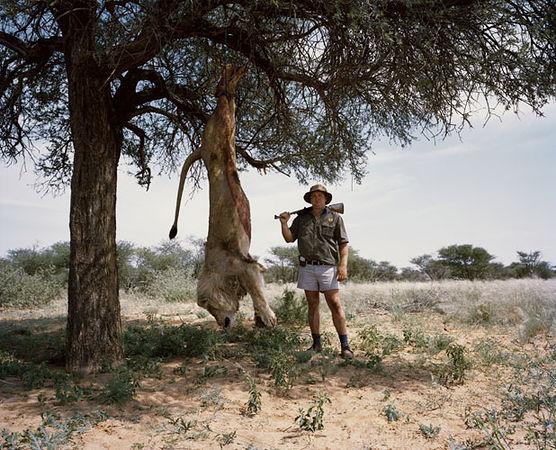 David Chancellor, Великобритания. Из серии «Hunters». Первая премия в Профессиональной категории VIPA 2013