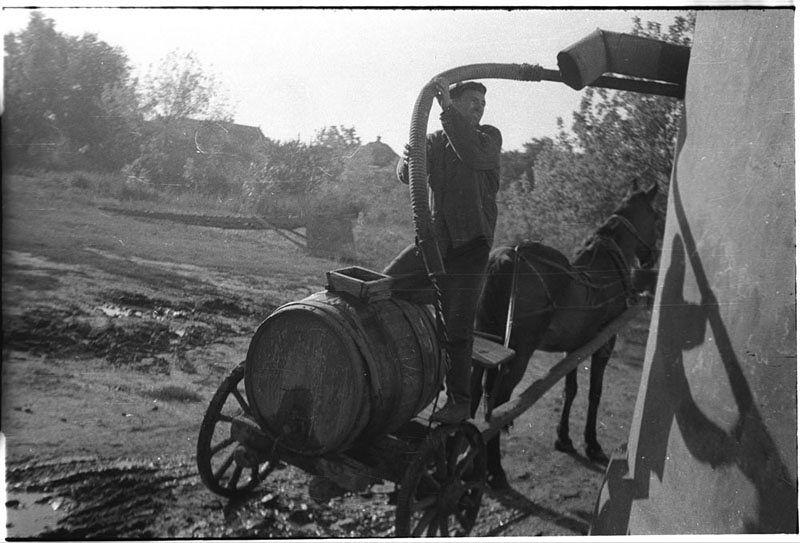 ©Марлен Матус (1939–2014). «Украина, Днепропетровская область. 1953»