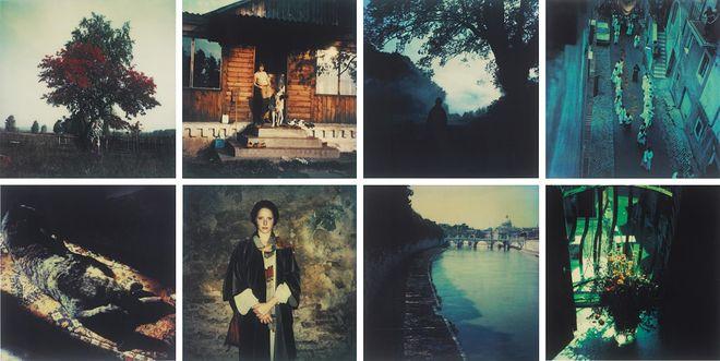 Phillips, © Андрей Тарковский, Поляроиды, 1979–1984