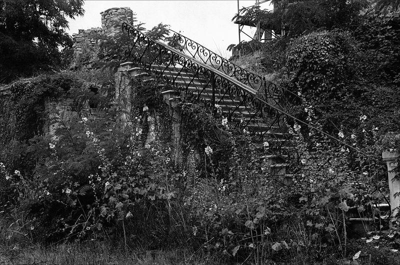 ©Александр Китаев. «Андреевский Скит. Лестница. 1997»