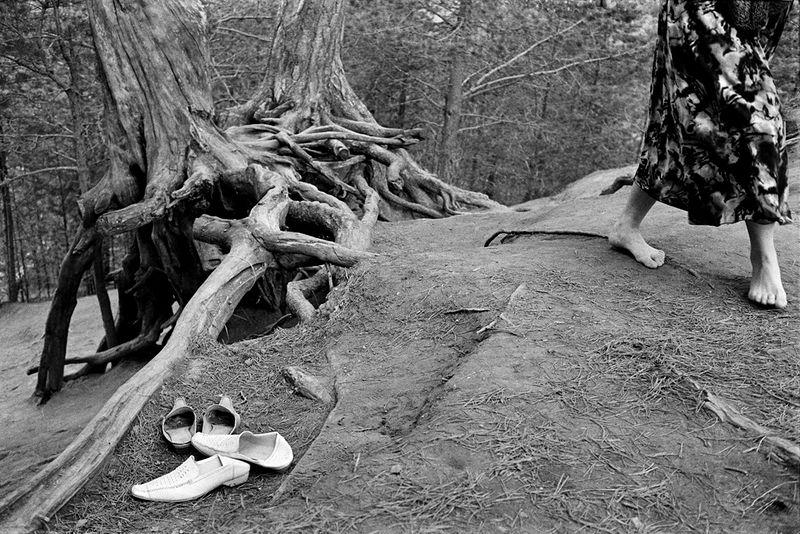 ©Эмиль Гатауллин. «Корни. Село Великорецкое, Кировская область. 2006»
