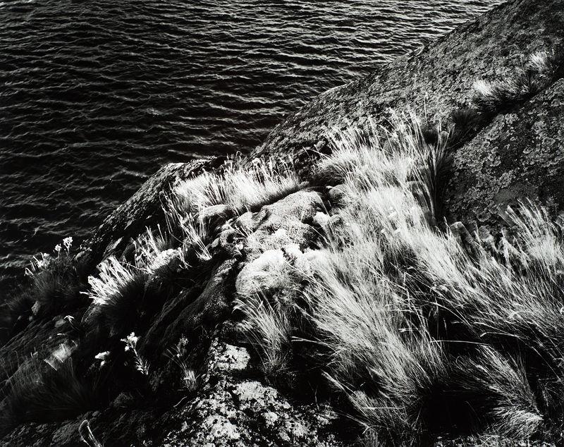 ©Юрий Опря. «Скала и травы»