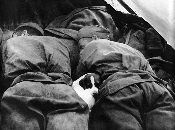 Г. Липскеров. Пусть солдаты немного поспят