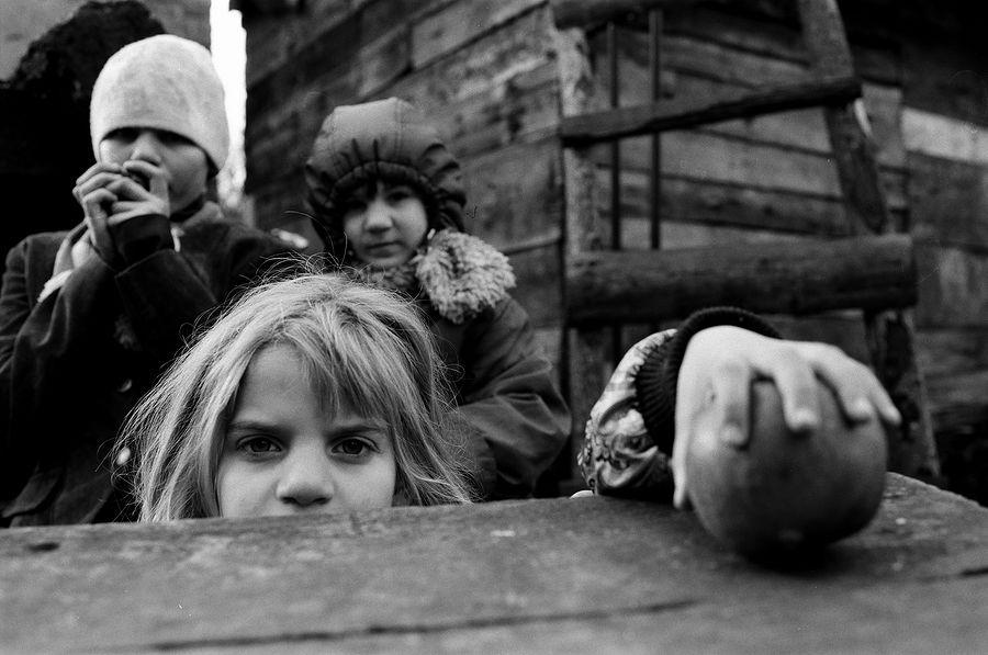 ©Борис Регистер. «Яблоко. Поселок Знаменск, Калининградская область. 2012»