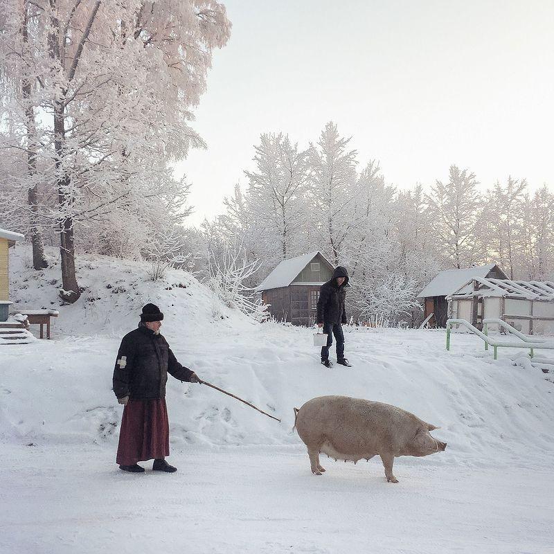©Дмитрий Марков. «Вышегород, Псковская область, 2016»