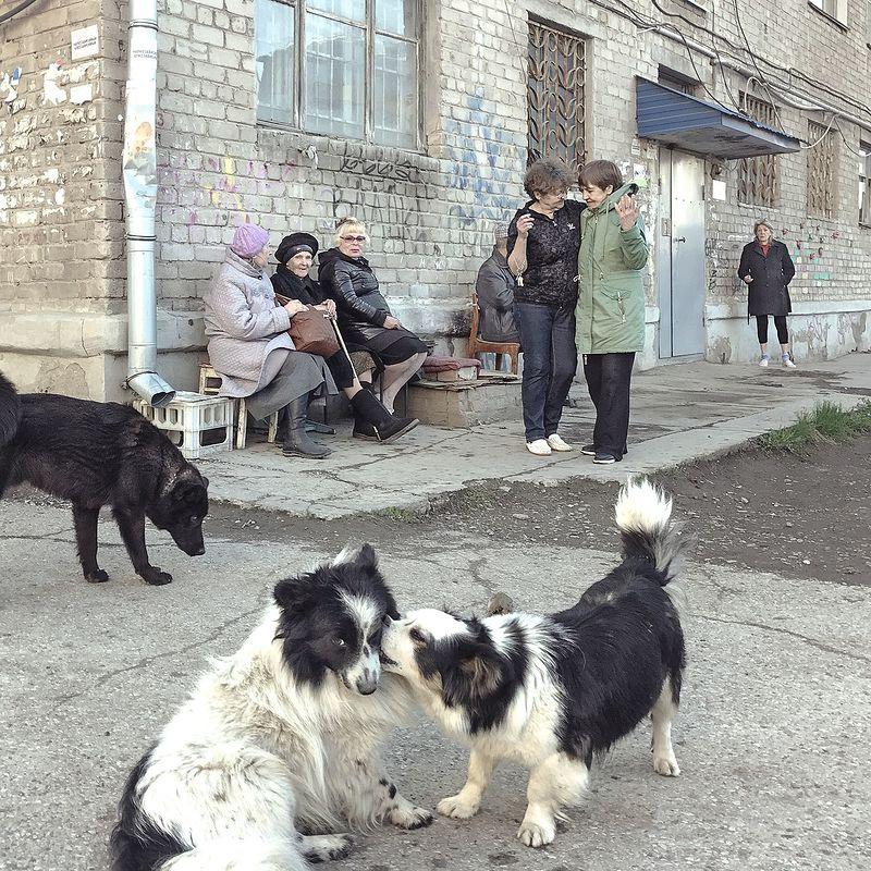 ©Дмитрий Марков. «Кунгур, Пермский край, 2017»