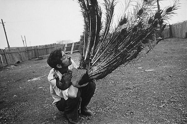 ©Ляля Кузнецова. «Одесса, 1990»