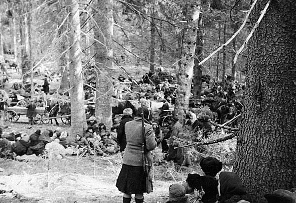 ©Сухова Мария. «Мария Сухова<br>Партизанский отряд в лесу<br>РГАКФД»