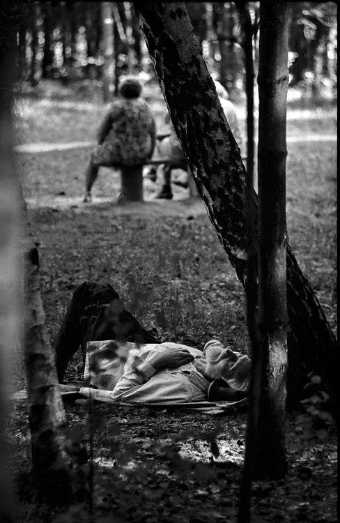 ©Дашевский Михаил Аронович. «Летние сны. 1965»
