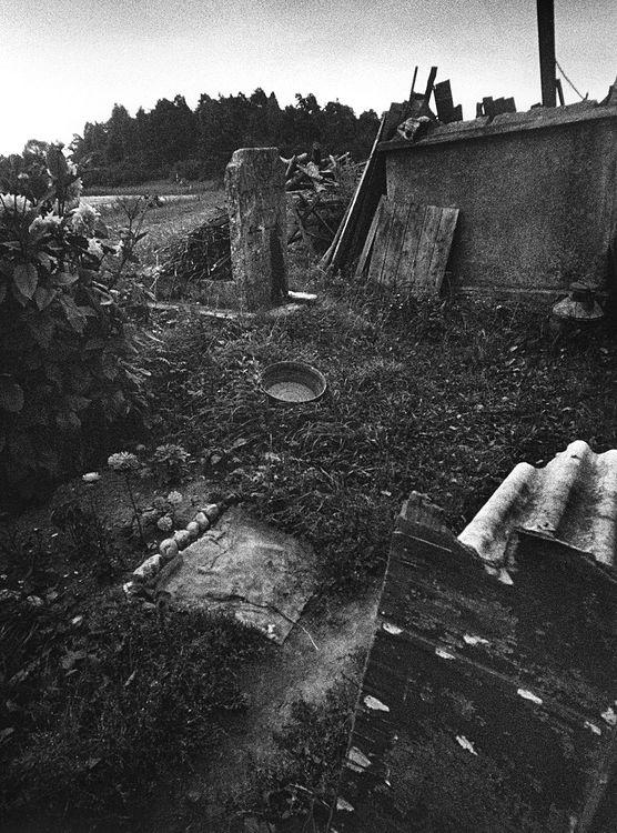©Дашевский Михаил Аронович. «Юден фрай-I (Зарасай, Литва). 1979»