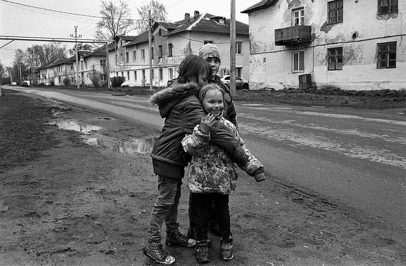©Дмитрий Черба. «Партизан. Тульская область. 2020»