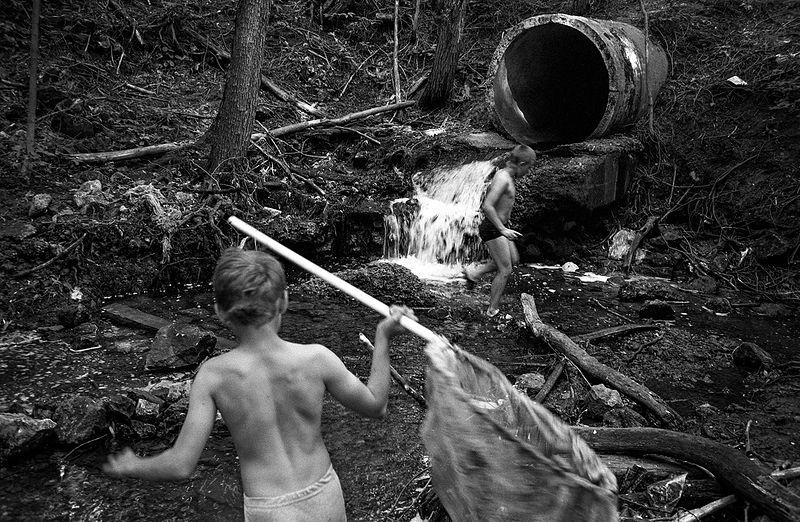 ©Дмитрий Черба. «Из серии «Рыбалка в Шаховском». Тульская область. 2020»