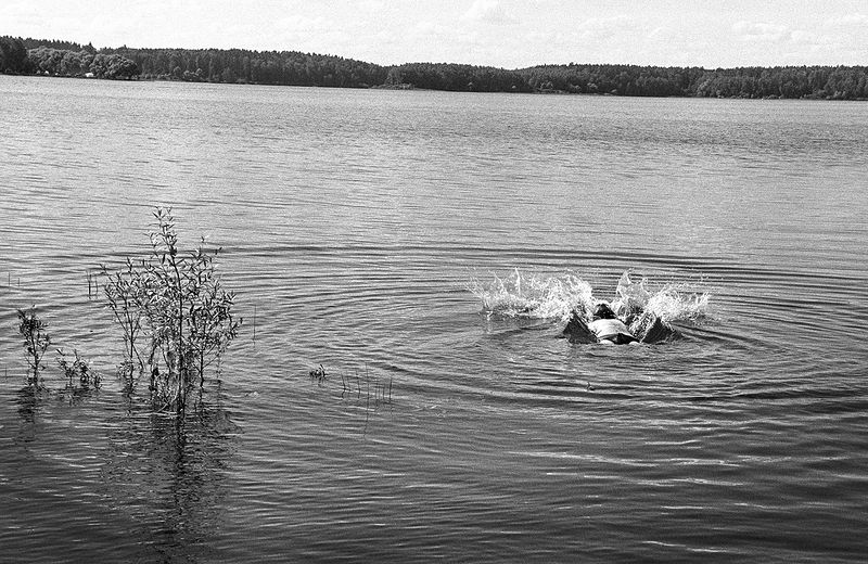 ©Дмитрий Черба. «Рузское водохранилище. Московская область. 2020»